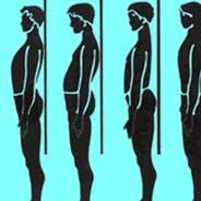 Las funciones del sistema oseo